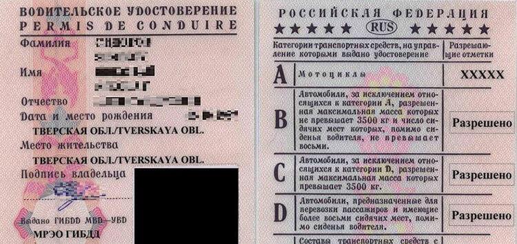 Drive License