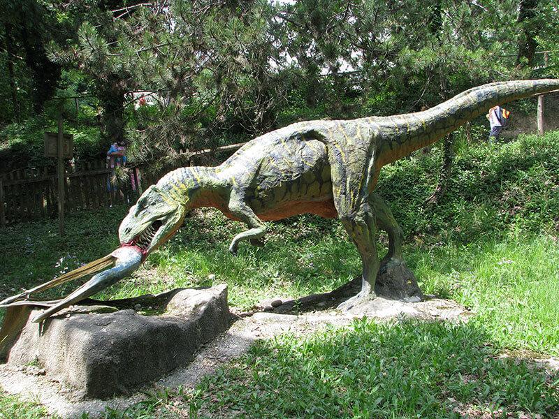Сафари-парк «Натура Вива»